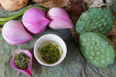 flor-de-loto-de-la-colección-semilla-té-comida-sana-54471346